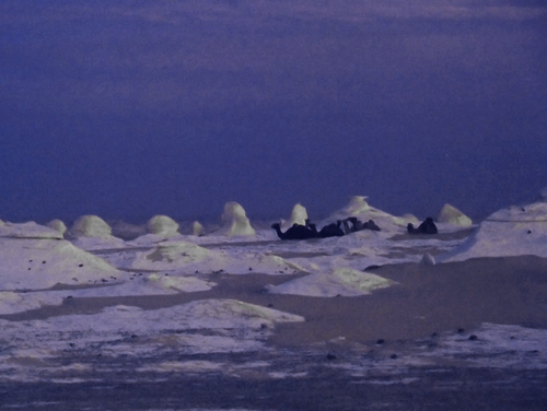 Nightfall in the White Desert
