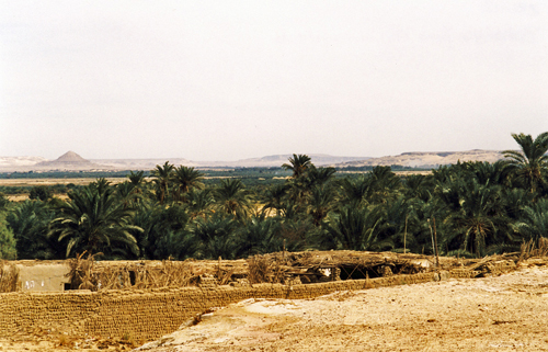 View from Ain el-Muftilla