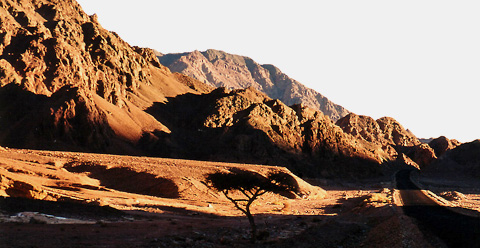 The road from Nuweiba to Dahab