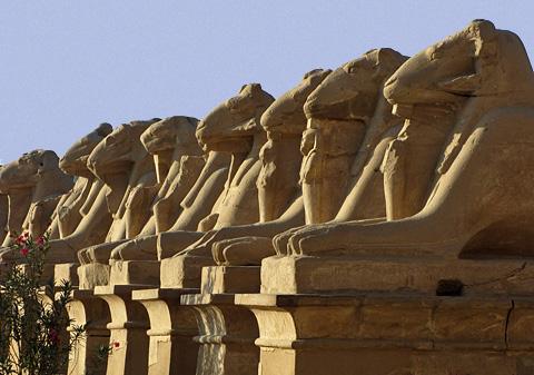 Karnak sphinxes of Rameses II?